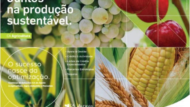 Nova campanha do Crédito Agrícola aposta na promoção de agricultura sustentável