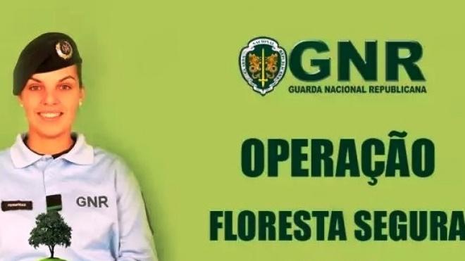"""GNR promove acções de sensibilização """"Floresta Segura 2020"""""""