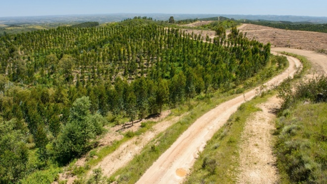"""GNR: """"Floresta Segura 2020"""""""