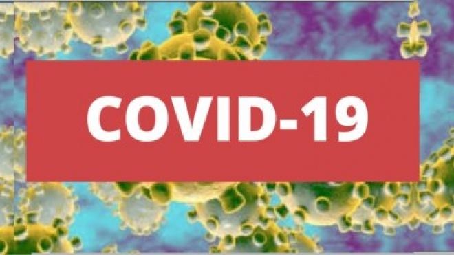 Boletim da DGS: Alentejo com 130 casos positivos de COVID-19
