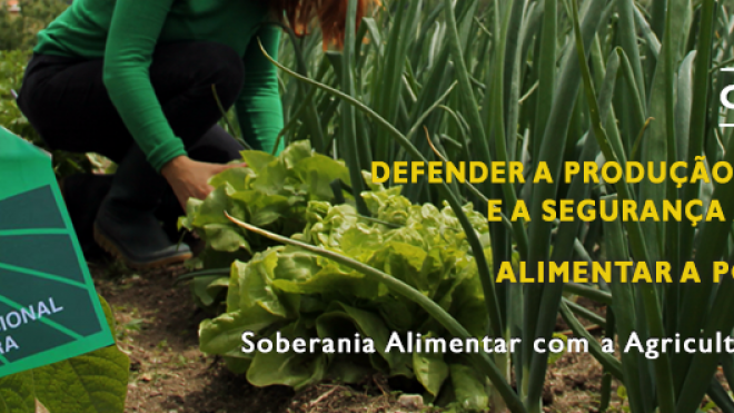 """CNA: ministério da Agricultura só """"acordou agora"""" para a importância da produção nacional"""