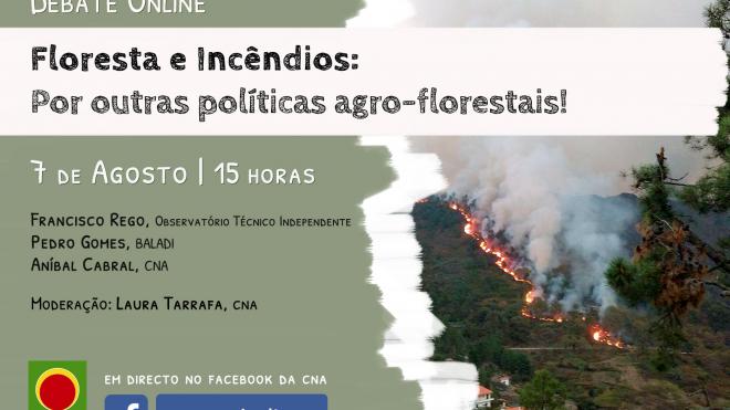 CNA promove debate online sobre Floresta e Incêndios