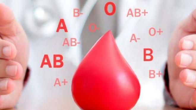 Colheita de sangue em Vila Verde de Ficalho neste sábado