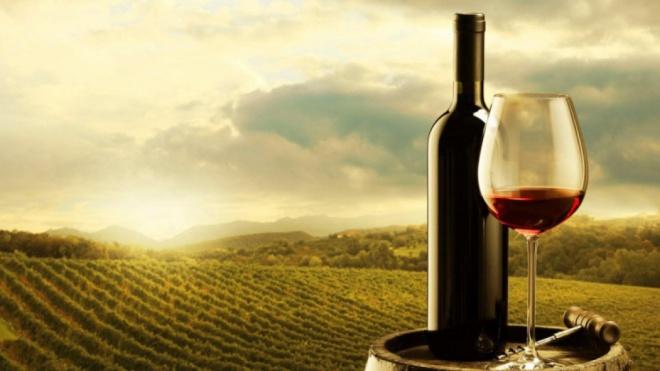 Programa de Sustentabilidade dos Vinhos do Alentejo recebe distinção internacional