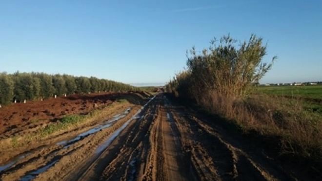 """Movimento Chão Nosso denuncia """"destruição de caminhos rurais"""""""