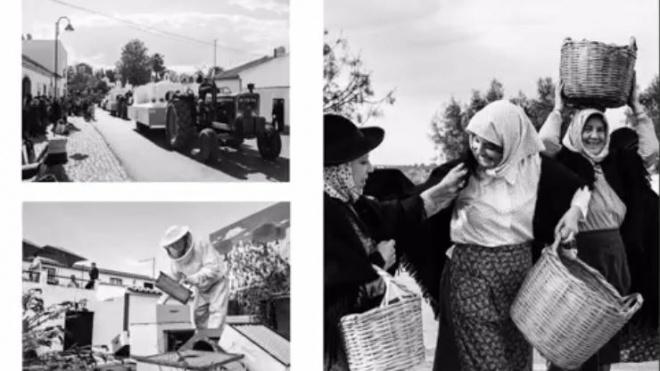 Serpa comemora quatro décadas de Cortejo Histórico e Etnográfico