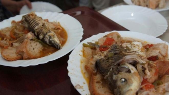 Moura: Festival do Peixe do Rio e do Pão e da Juventude