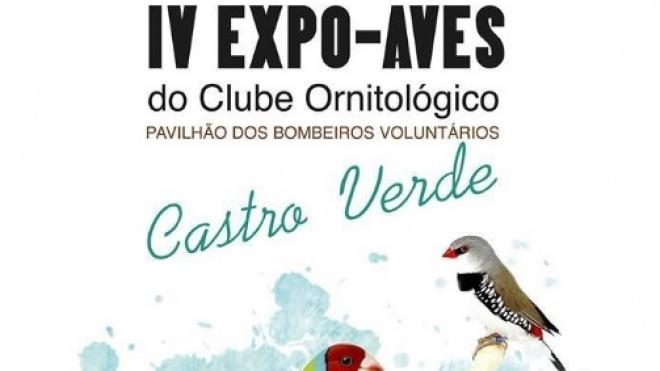 IV Expo-Aves do Clube Ornitológico de Castro Verde
