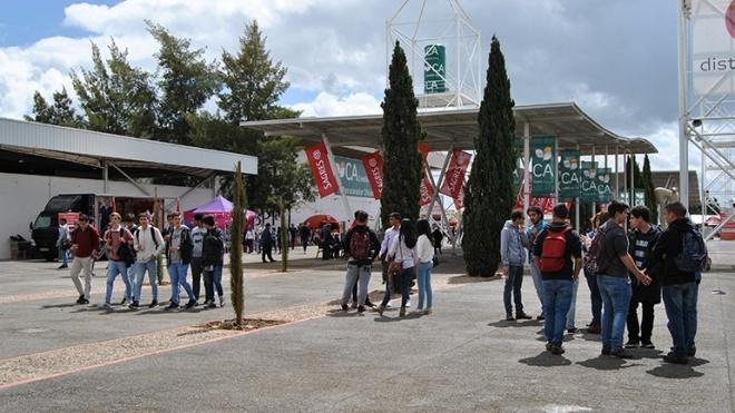 Ovibeja abre portas no Parque de Feiras e Exposições