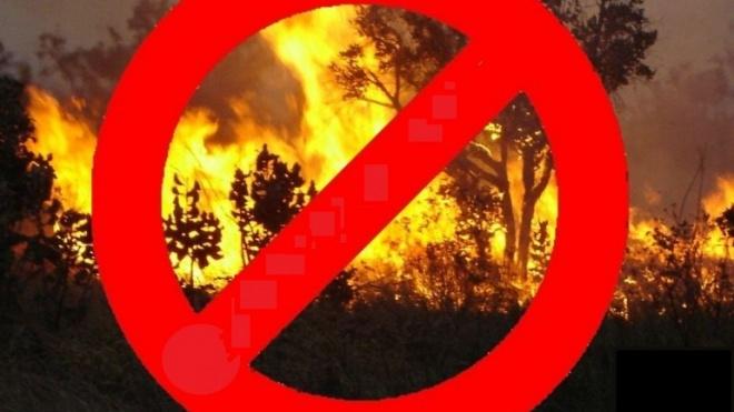 O CDOS deixa recomendações para o período crítico de incêndios