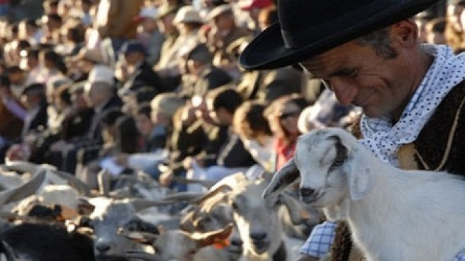 Cortejo Histórico e Etnográfico é momento alto das festas de Serpa