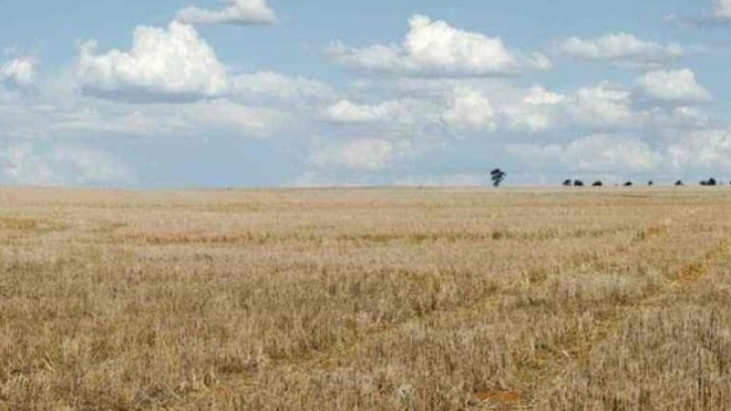 FAABA reclama medidas urgentes de combate à seca no Alentejo